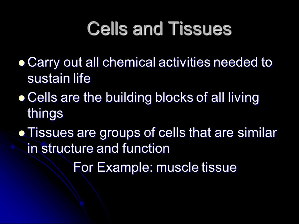 Cells and Tissues Carry out all chemical activities needed to sustain life. Cells are the building blocks of all living things.