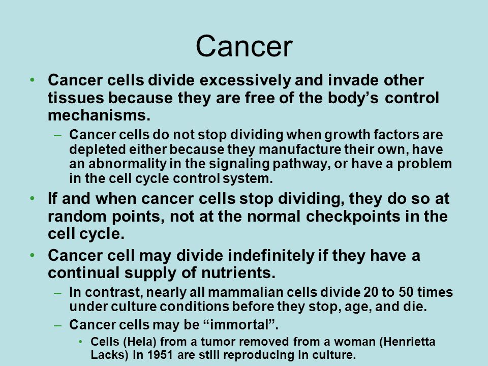 Cancer Cancer cells divide excessively and invade other tissues because they are free of the body's control mechanisms.