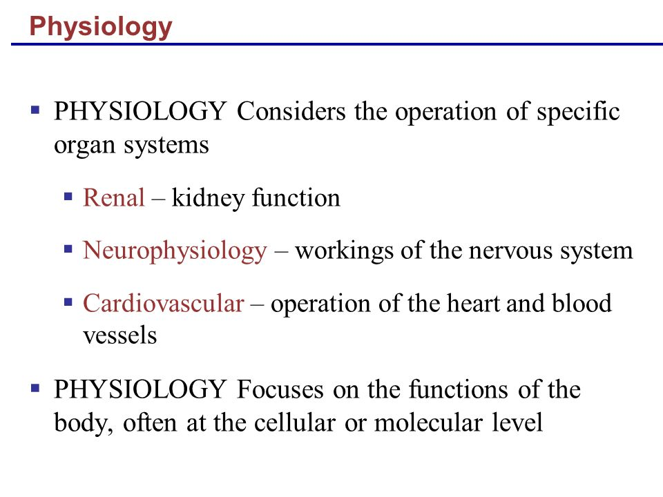 PHYSIOLOGY Considers the operation of specific organ systems