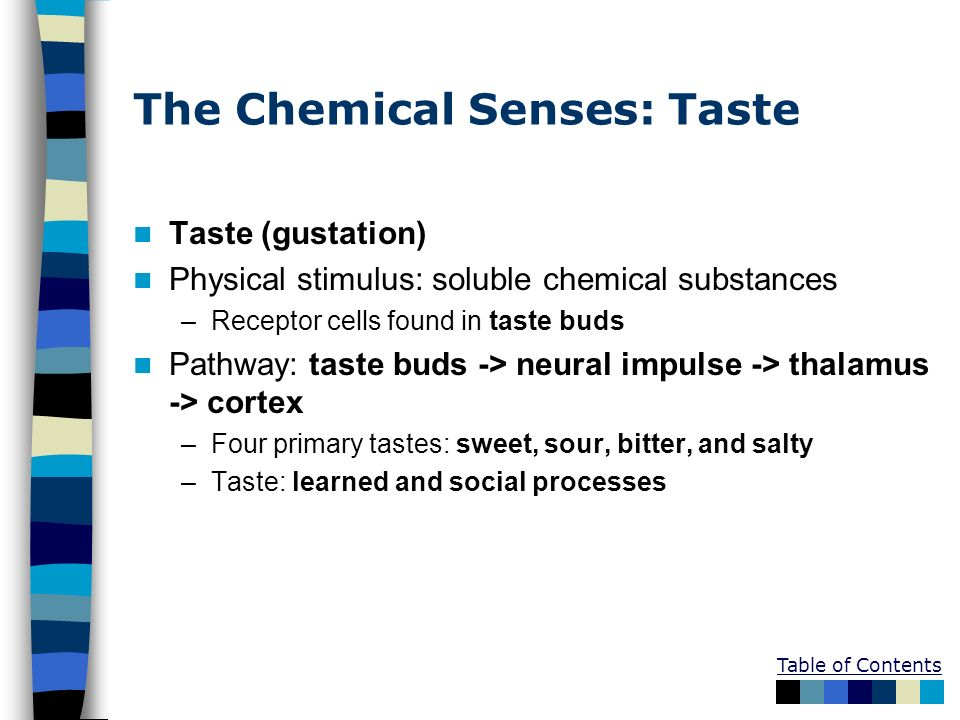 The Chemical Senses: Taste