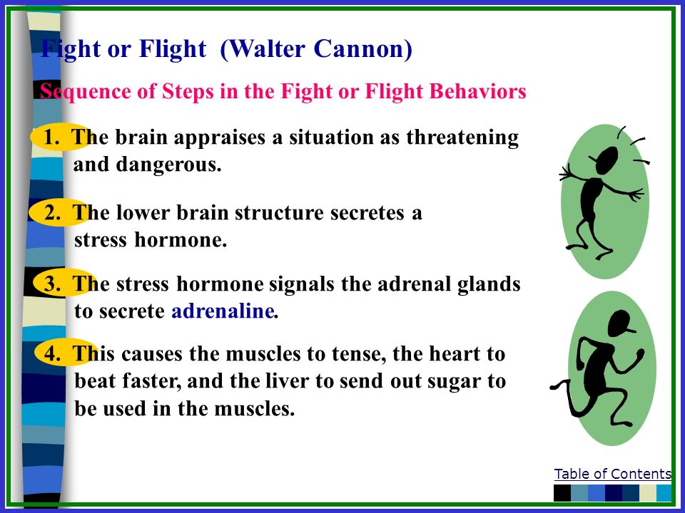 Fight or Flight (Walter Cannon)