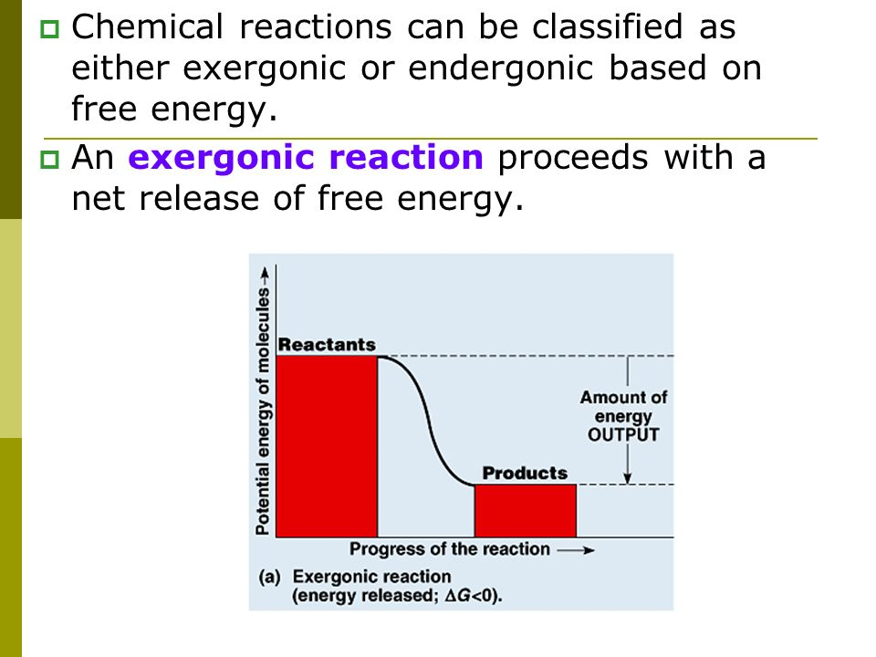 Chemical reactions can be classified as either exergonic or endergonic based on free energy.