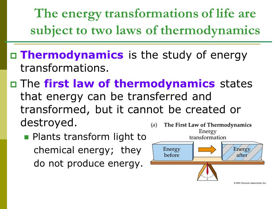 The energy transformations of life are subject to two laws of thermodynamics