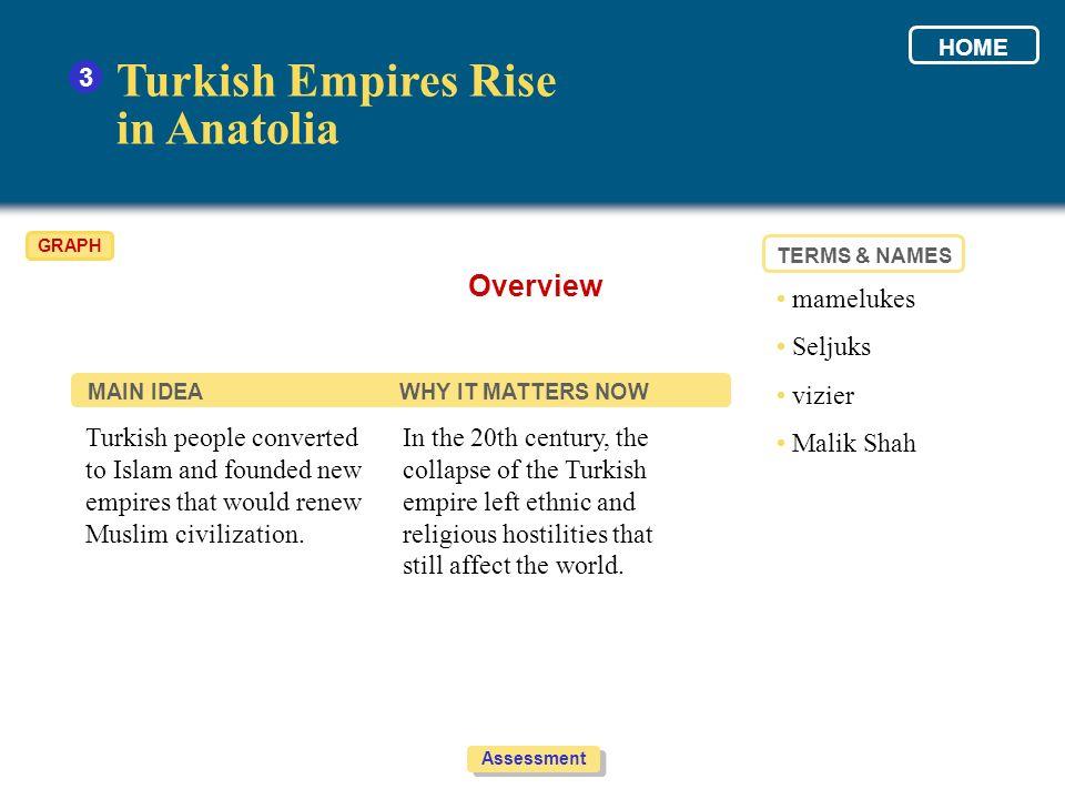 Turkish Empires Rise in Anatolia Overview 3 • mamelukes • Seljuks