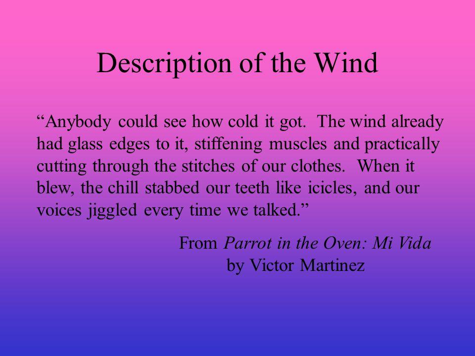 Description of the Wind