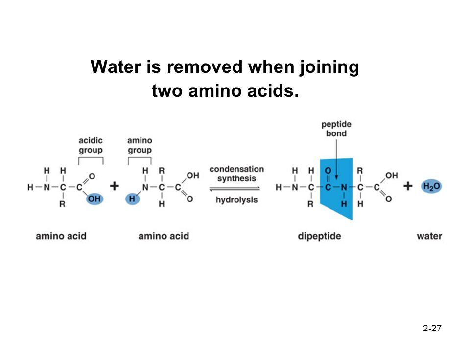 Water is removed when joining