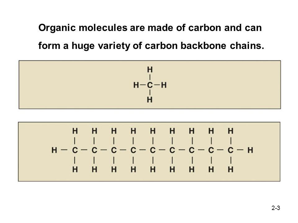 Organic molecules are made of carbon and can