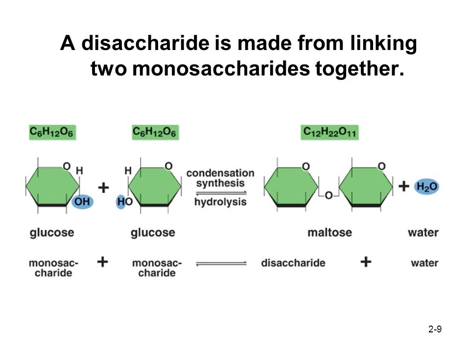 A disaccharide is made from linking two monosaccharides together.