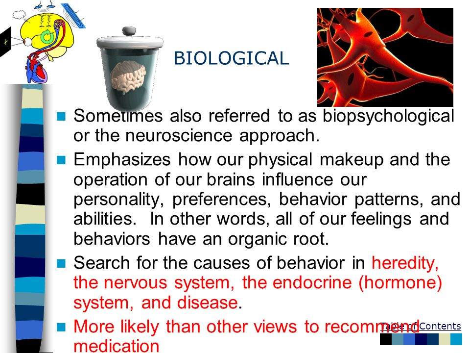 BIOLOGICAL Sometimes also referred to as biopsychological or the neuroscience approach.