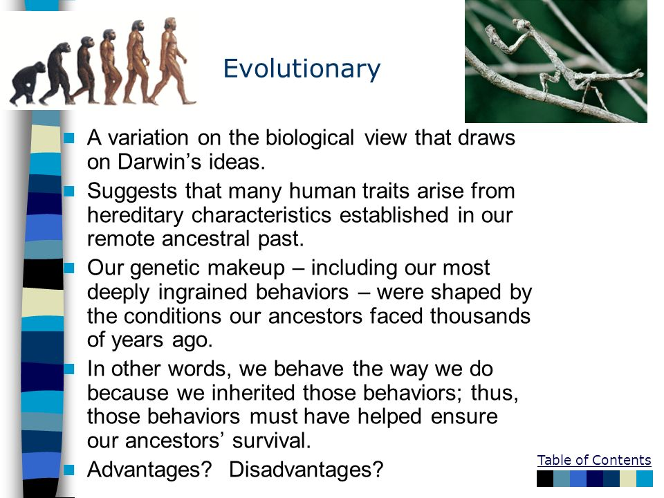 Evolutionary A variation on the biological view that draws on Darwin's ideas.