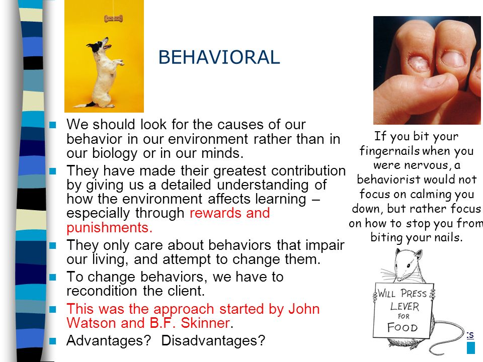 BEHAVIORAL We should look for the causes of our behavior in our environment rather than in our biology or in our minds.