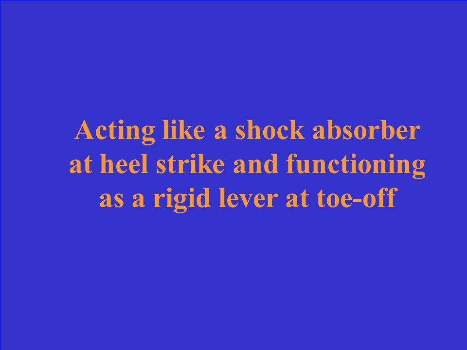 Acting like a shock absorber at heel strike and functioning as a rigid lever at toe-off