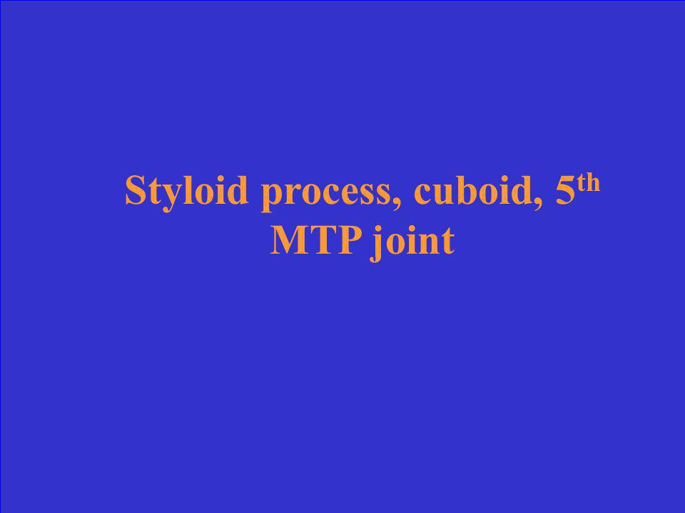 Styloid process, cuboid, 5th MTP joint