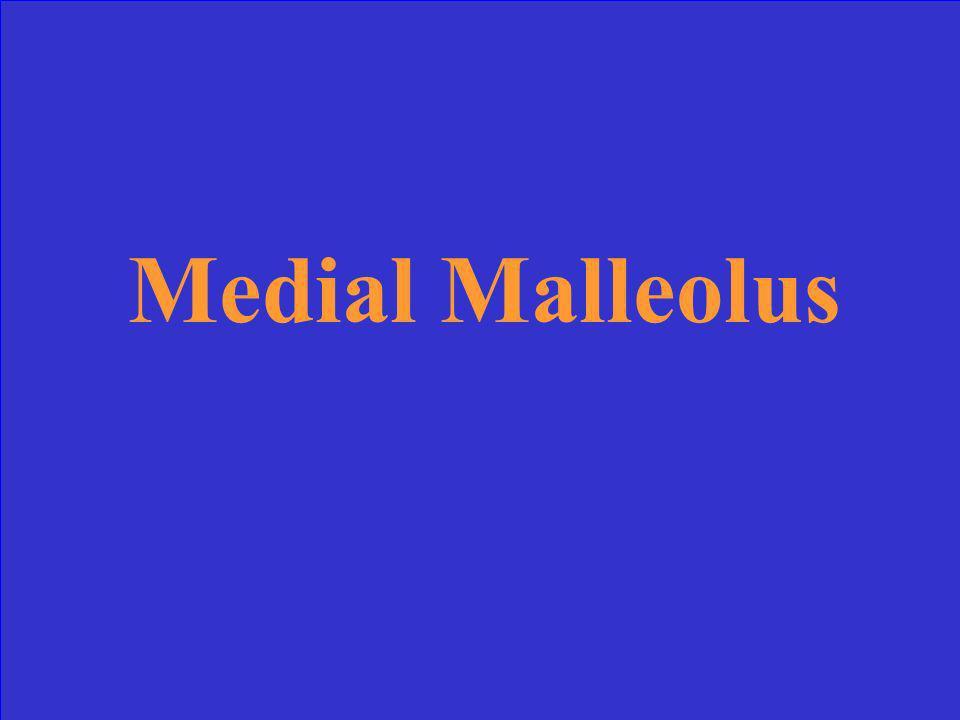 Medial Malleolus