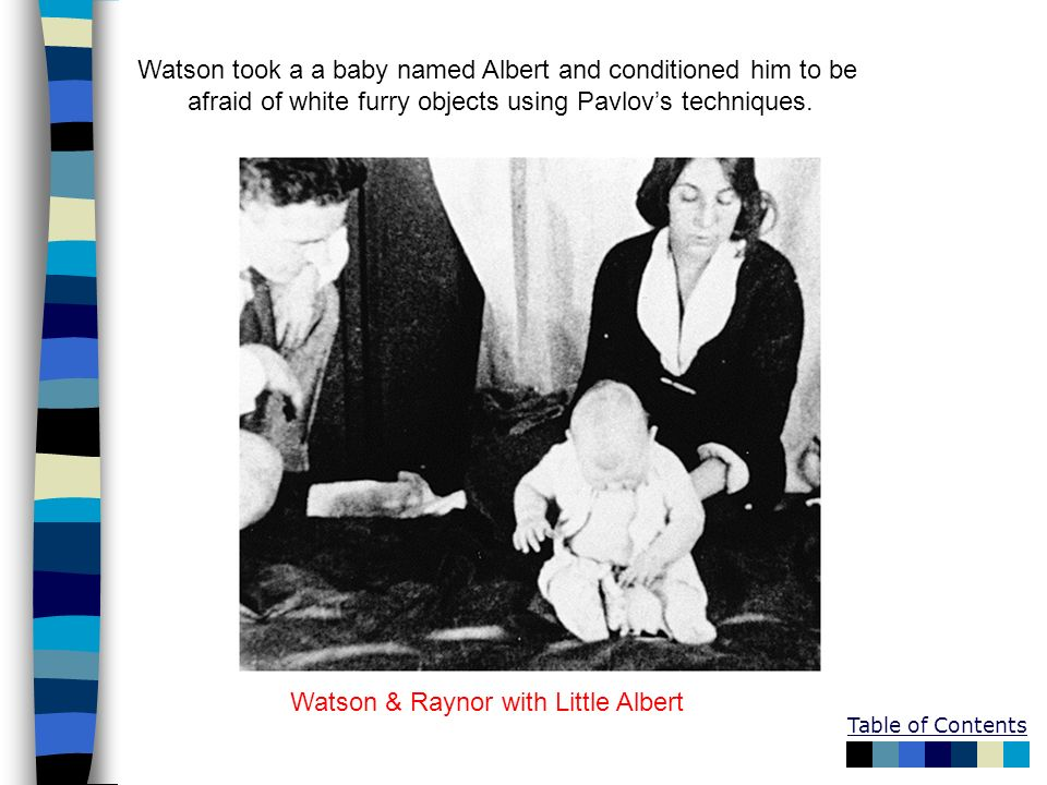Watson took a a baby named Albert and conditioned him to be