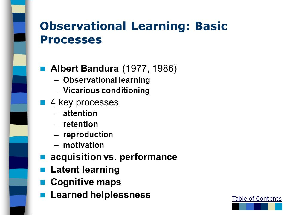 Observational Learning: Basic Processes