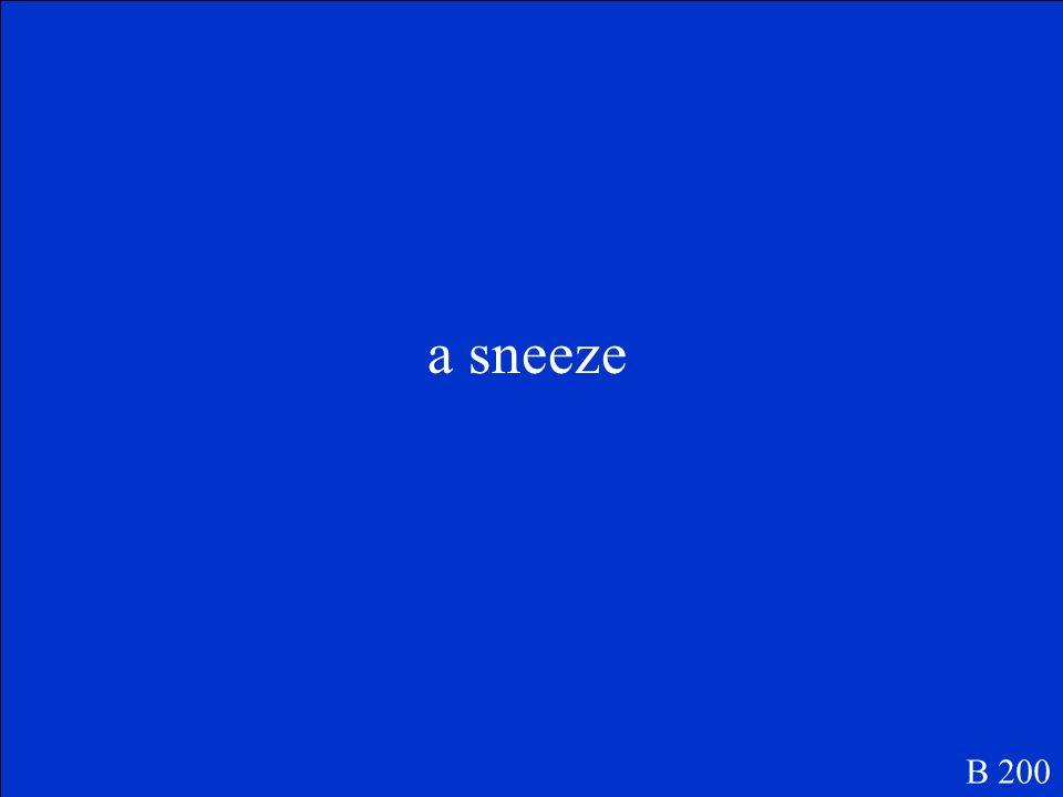 a sneeze B 200
