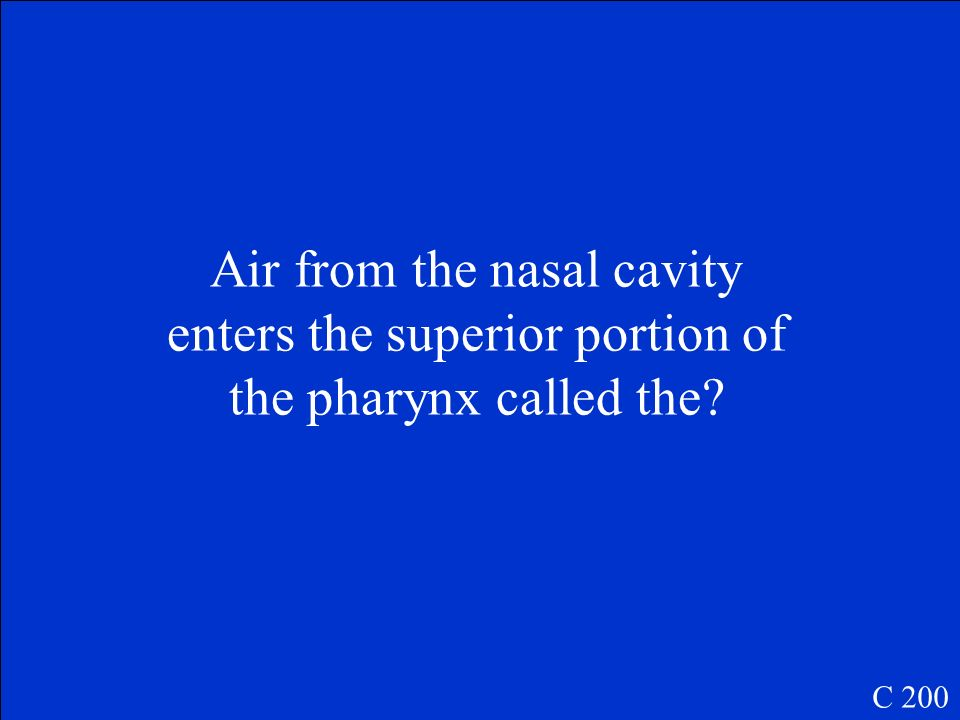 Air from the nasal cavity enters the superior portion of the pharynx called the