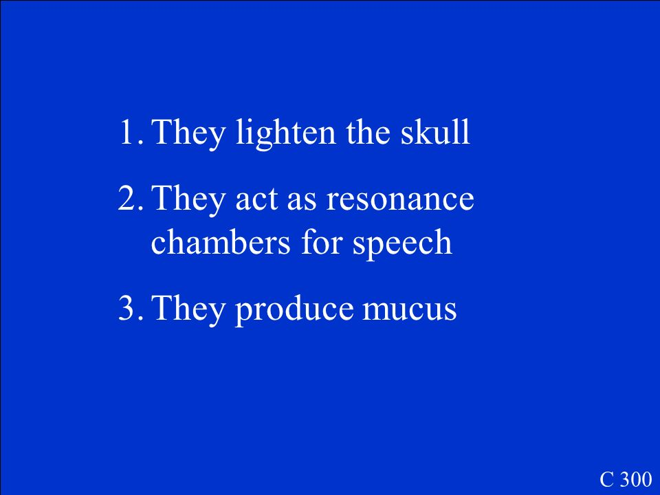 They act as resonance chambers for speech