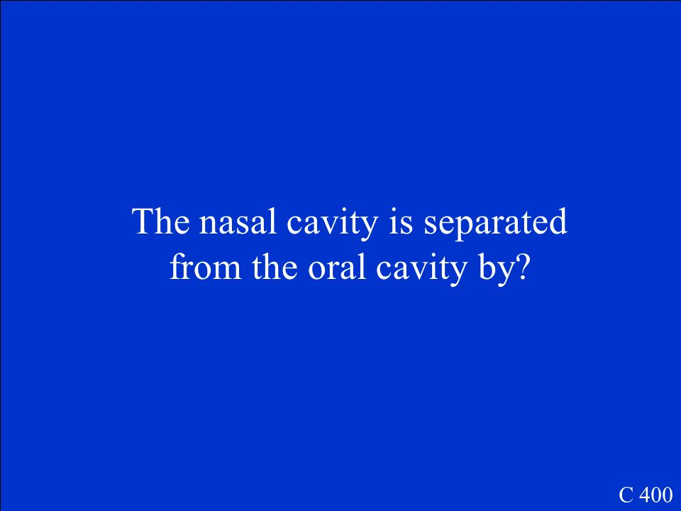 The nasal cavity is separated from the oral cavity by