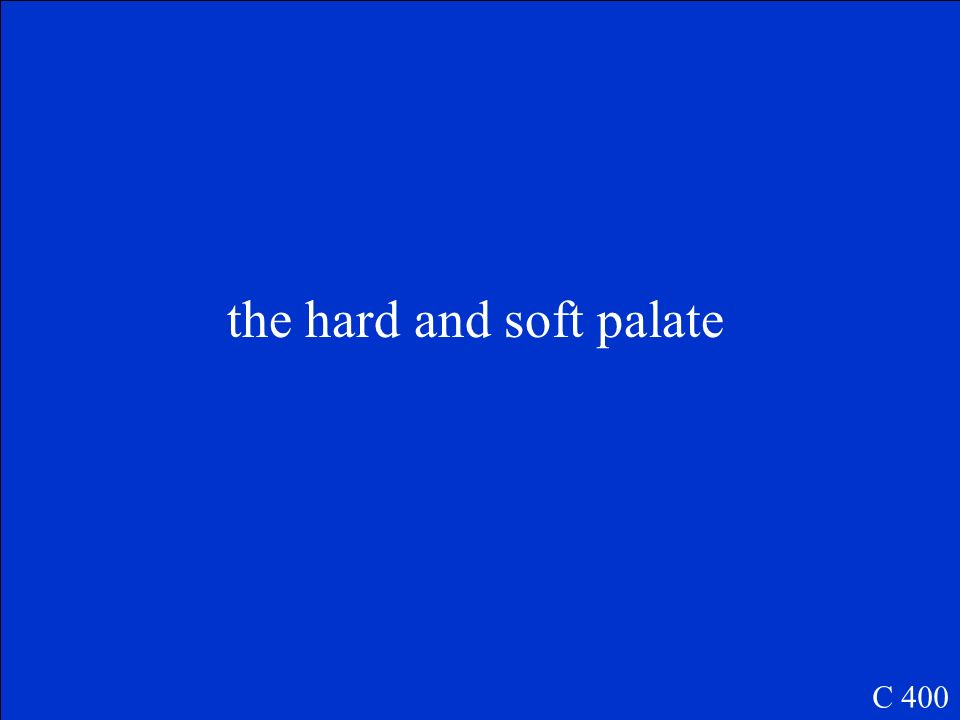 the hard and soft palate