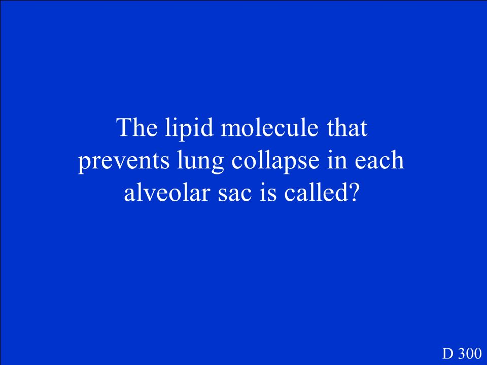 The lipid molecule that prevents lung collapse in each alveolar sac is called