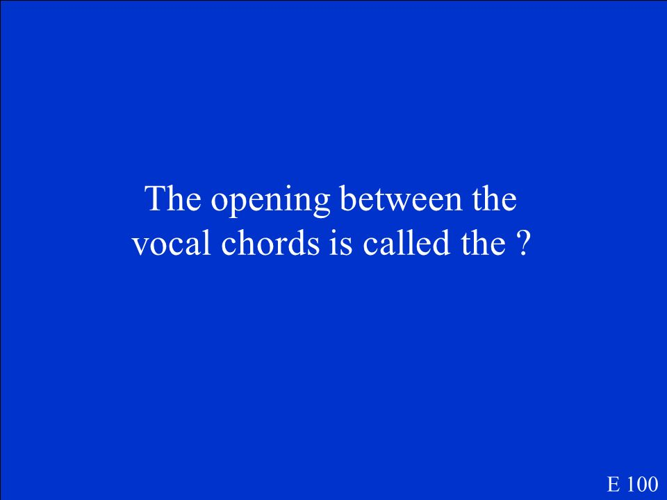 The opening between the vocal chords is called the