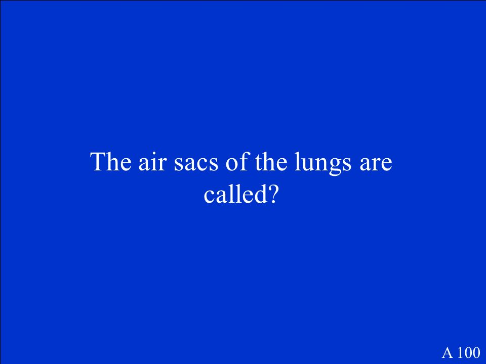 The air sacs of the lungs are called