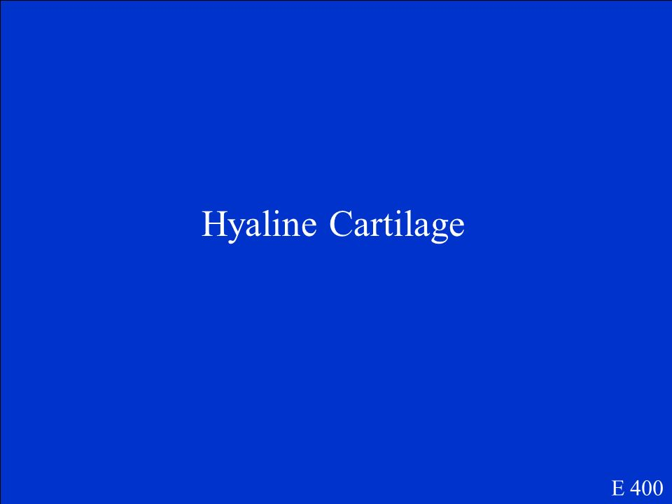 Hyaline Cartilage E 400