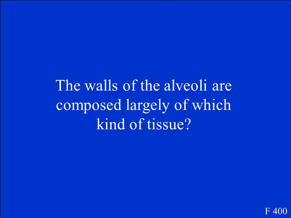 The walls of the alveoli are composed largely of which kind of tissue