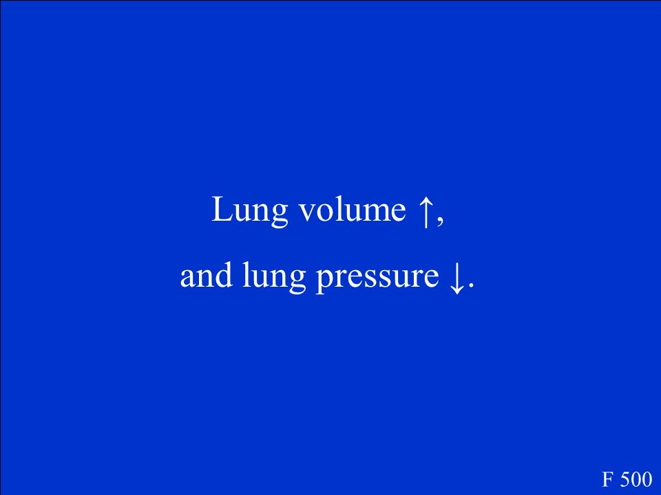 Lung volume ↑, and lung pressure ↓. F 500