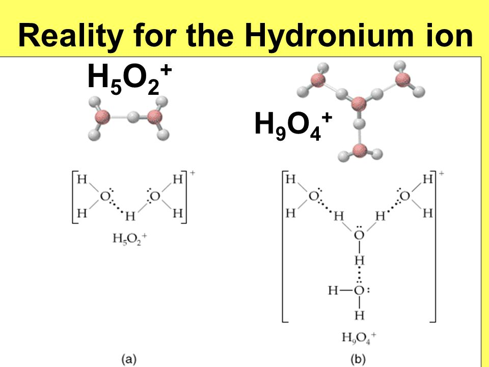 Reality for the Hydronium ion H5O2+