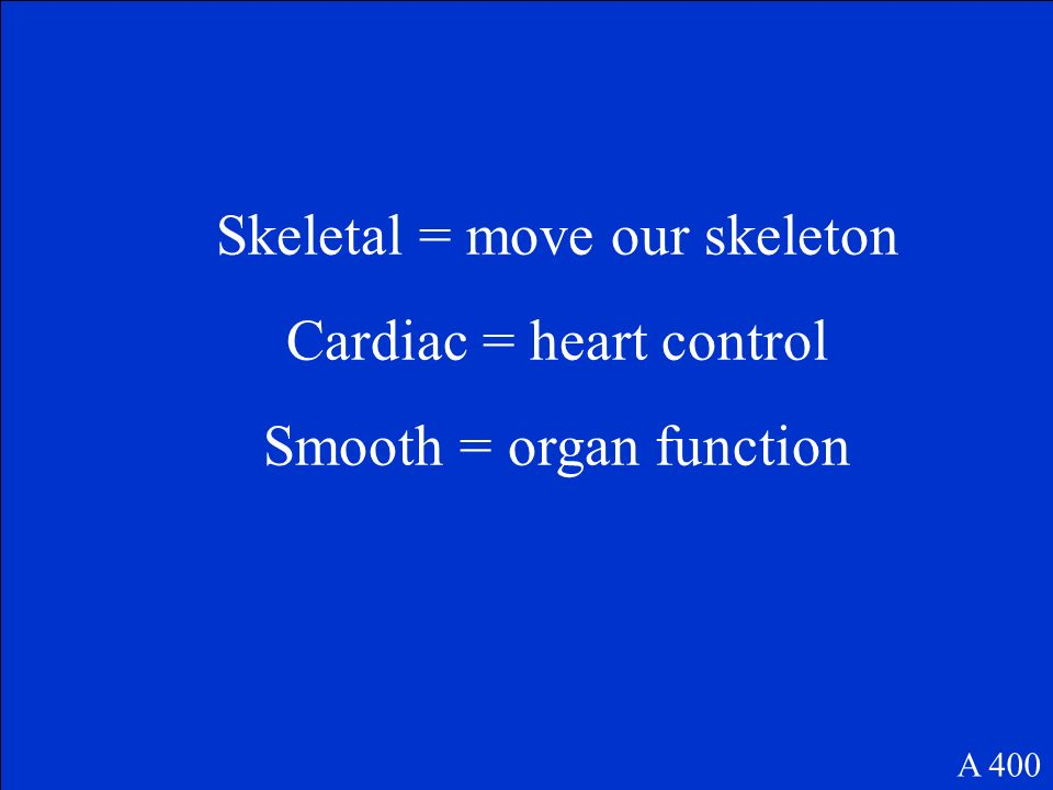 Skeletal = move our skeleton Cardiac = heart control