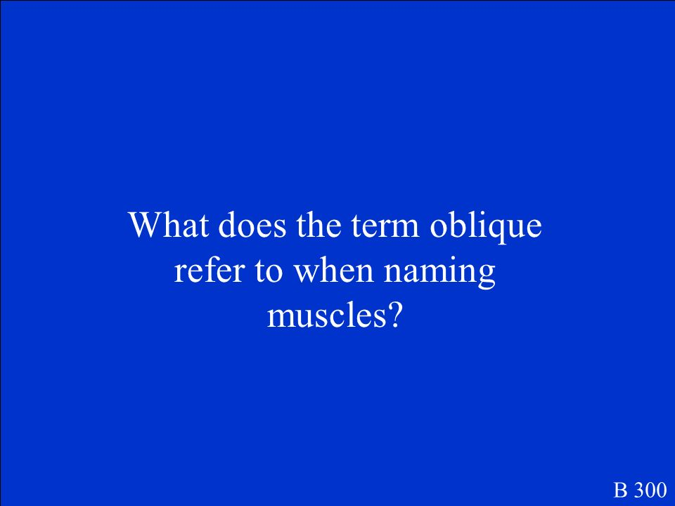 What does the term oblique refer to when naming muscles