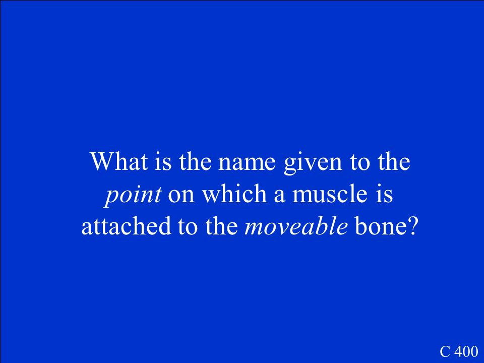 What is the name given to the point on which a muscle is attached to the moveable bone