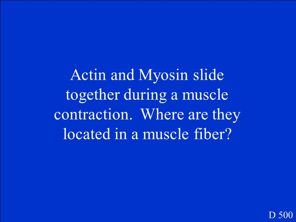 Actin and Myosin slide together during a muscle contraction