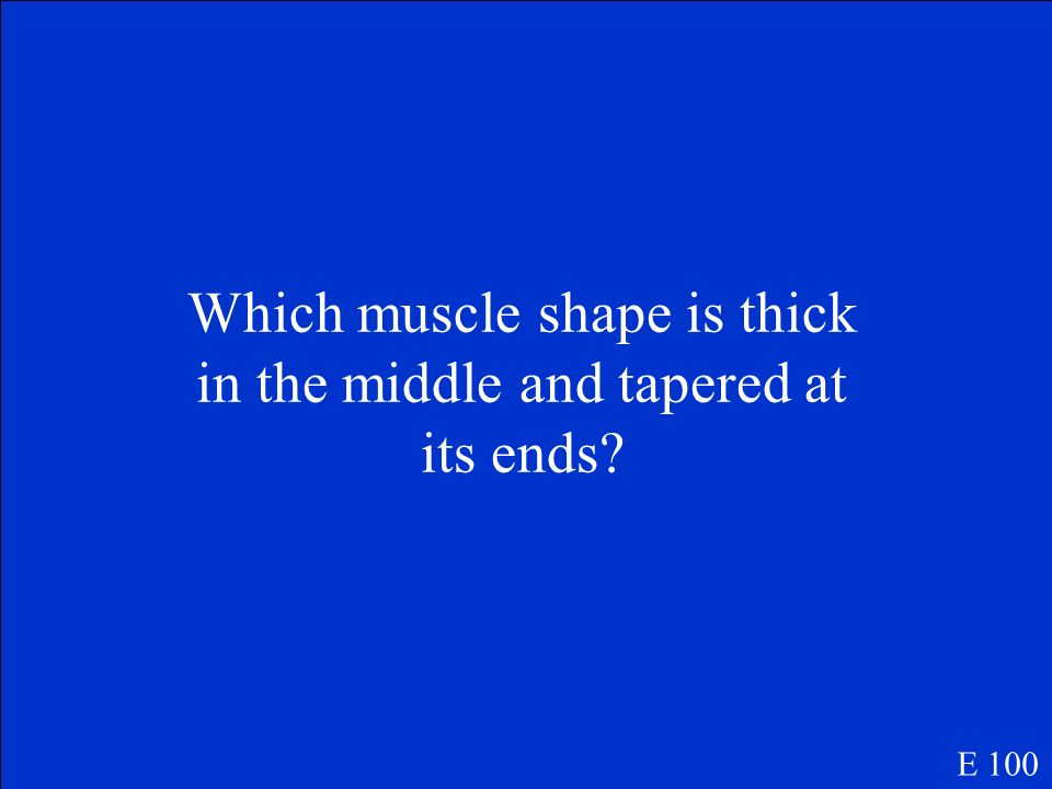 Which muscle shape is thick in the middle and tapered at its ends