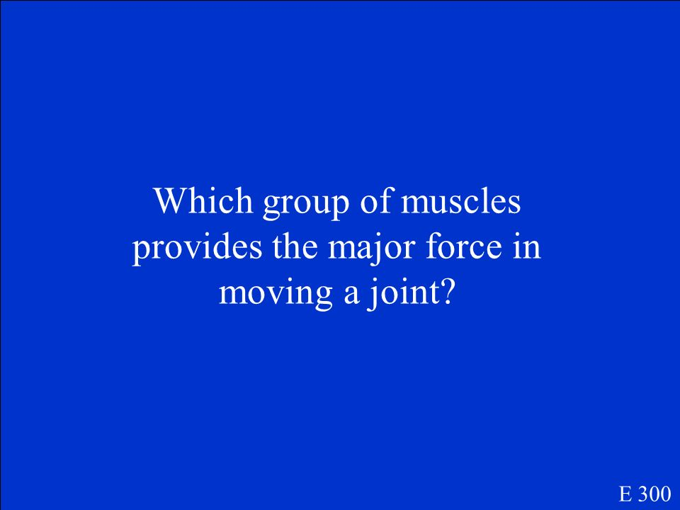 Which group of muscles provides the major force in moving a joint