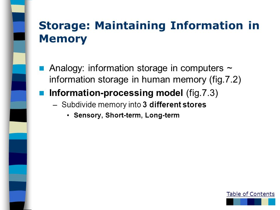 Storage: Maintaining Information in Memory