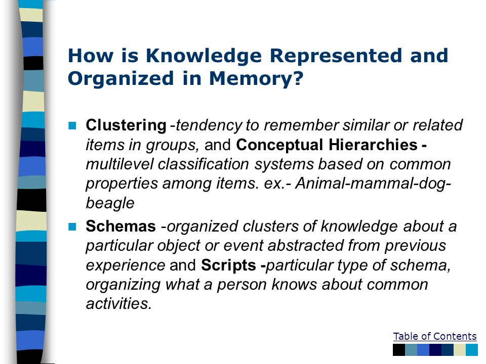 How is Knowledge Represented and Organized in Memory