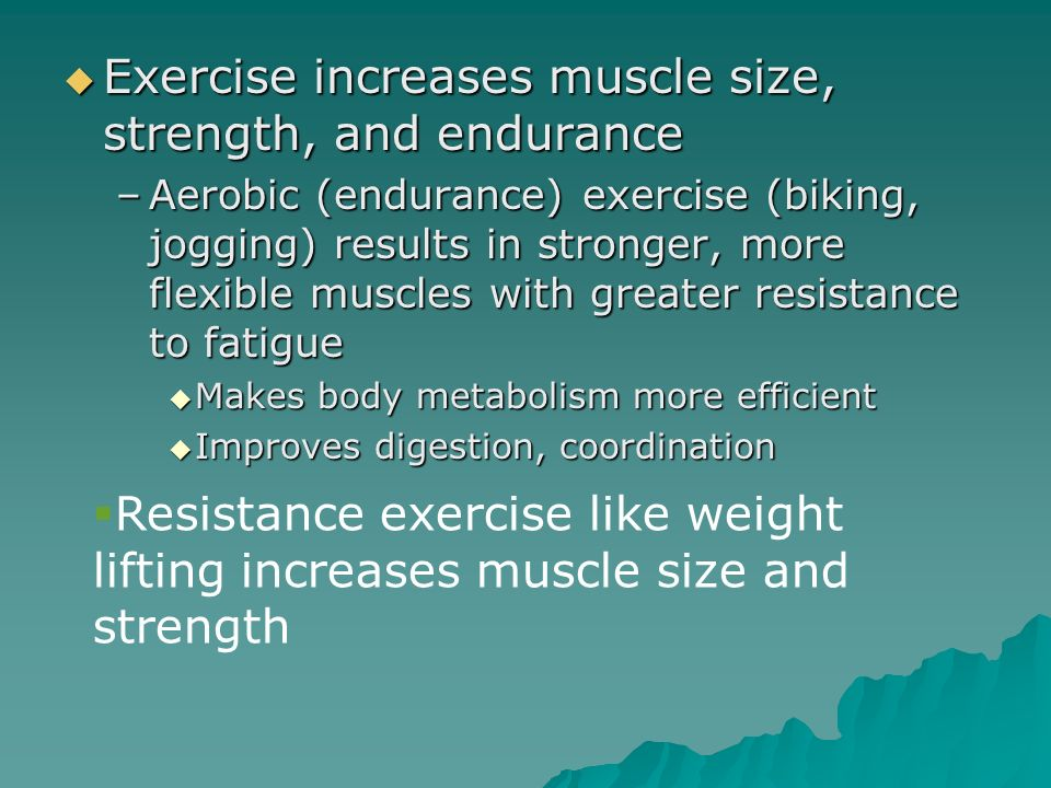 Exercise increases muscle size, strength, and endurance