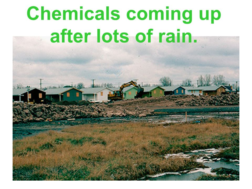 Chemicals coming up after lots of rain.