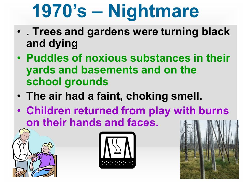 1970's – Nightmare . Trees and gardens were turning black and dying