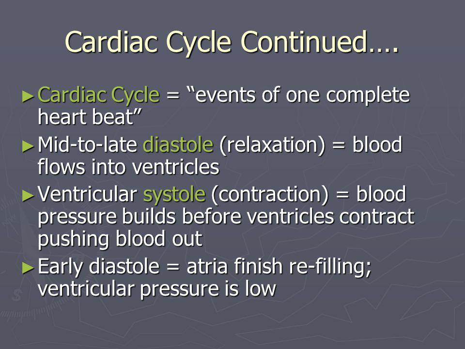 Cardiac Cycle Continued….