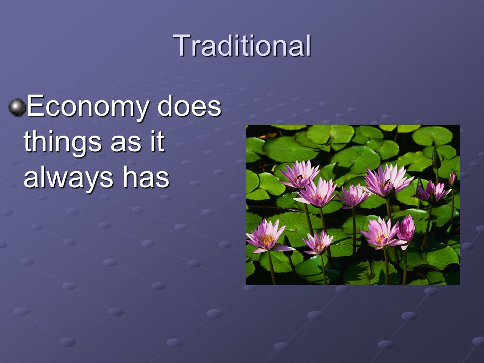 Traditional Economy does things as it always has