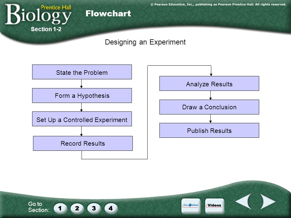 Flowchart Designing an Experiment State the Problem Analyze Results