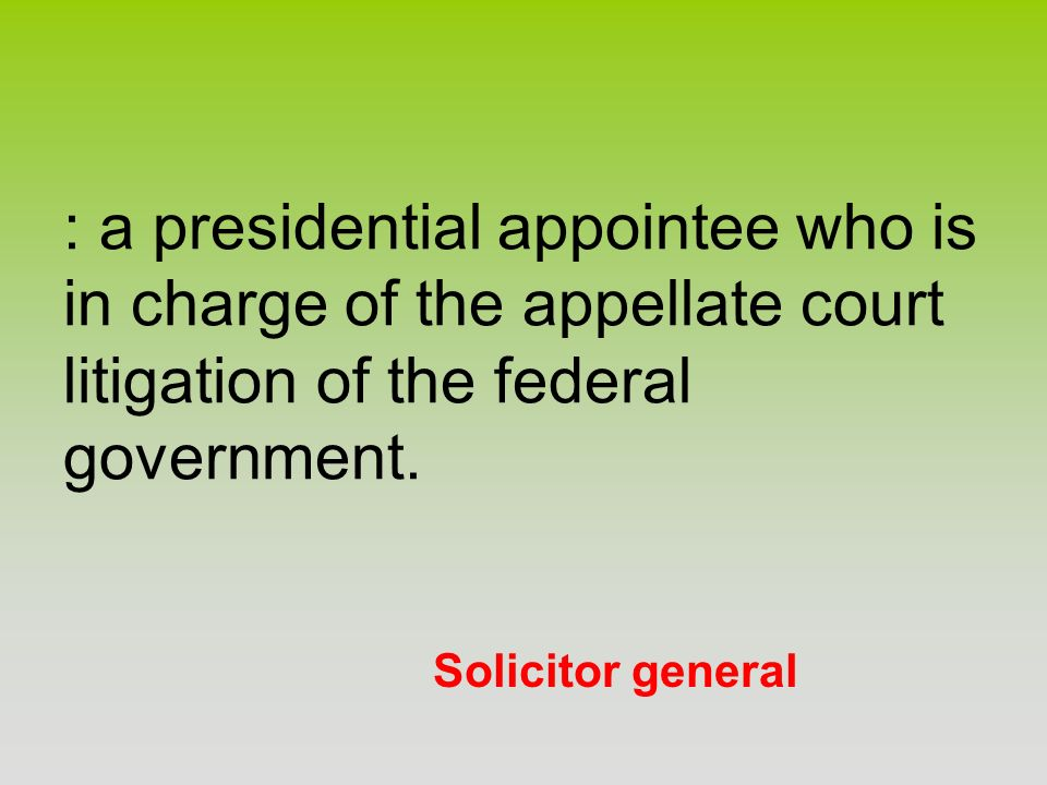 : a presidential appointee who is in charge of the appellate court litigation of the federal government.