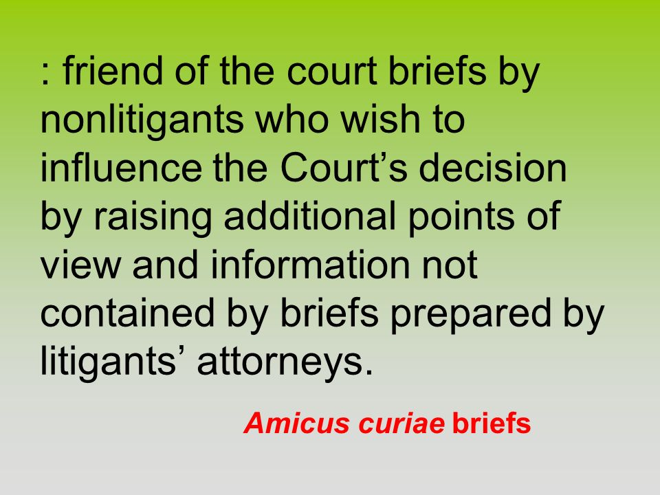 : friend of the court briefs by nonlitigants who wish to influence the Court's decision by raising additional points of view and information not contained by briefs prepared by litigants' attorneys.