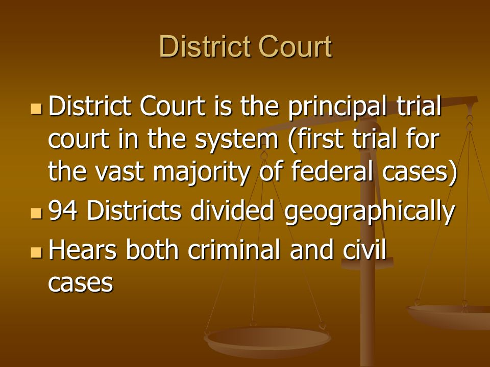 District Court District Court is the principal trial court in the system (first trial for the vast majority of federal cases)