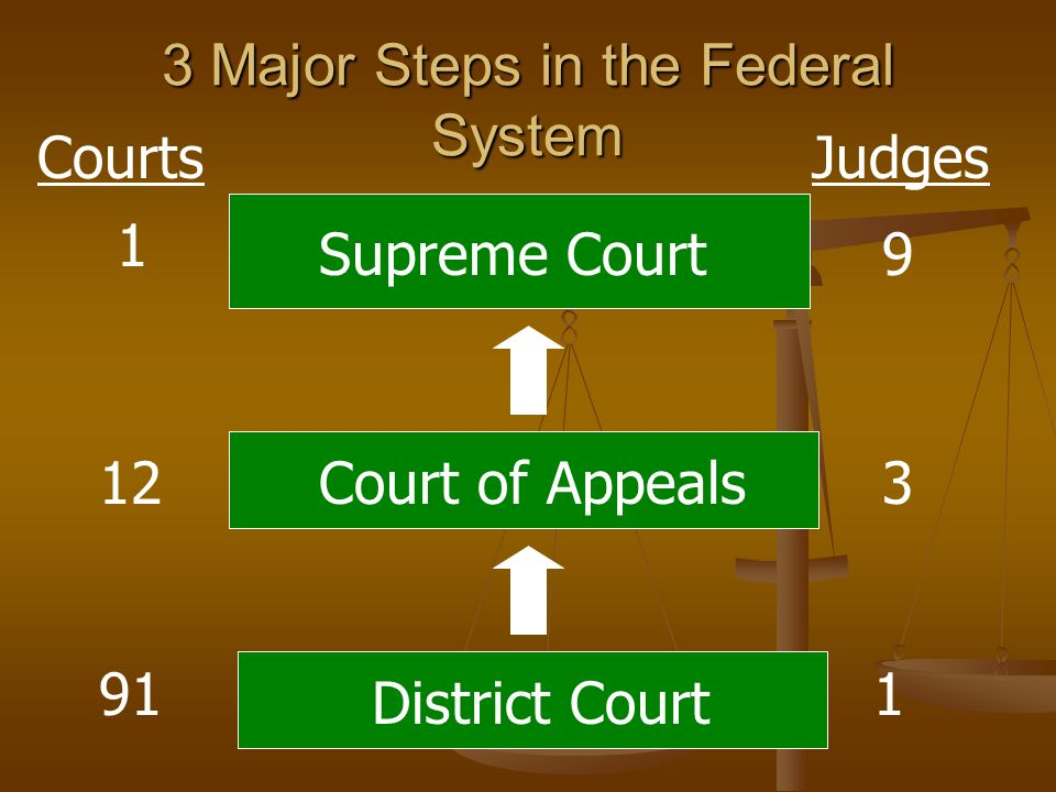 3 Major Steps in the Federal System